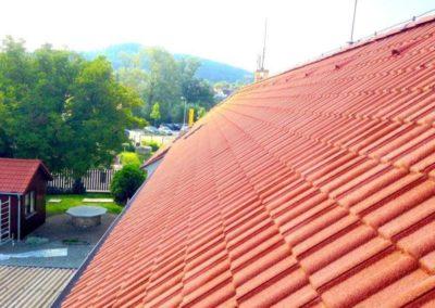 Čištění střech 01