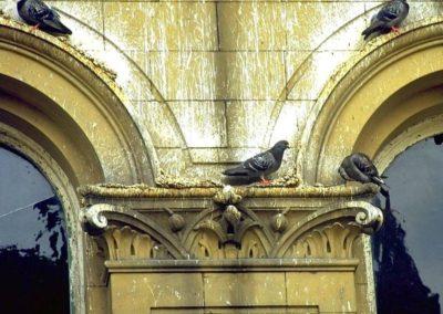 Výškové instalace zábran proti ptactvu 02